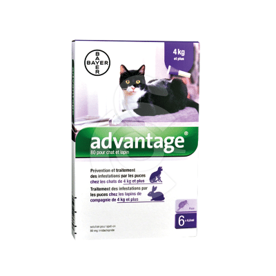 Advantage 80 Chat/Lapin