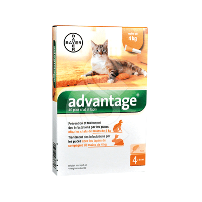 Advantage 40 Chat/Lapin
