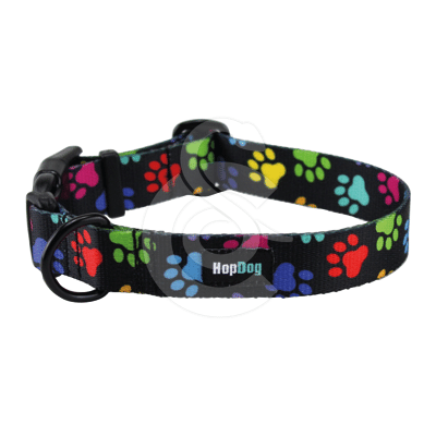 Collier Hop Dog Paw Wow