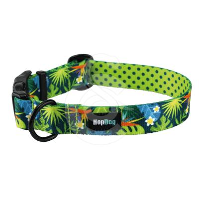 Collier Hop Dog Tropics Time