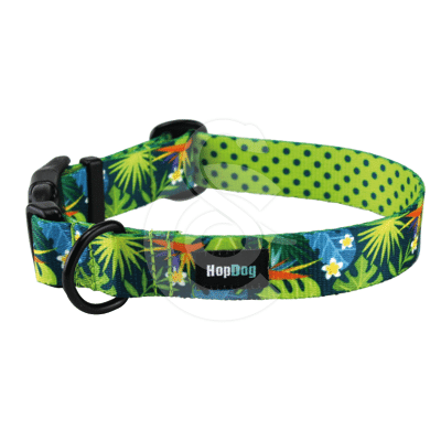 Collier Hop Dog Tropics Time