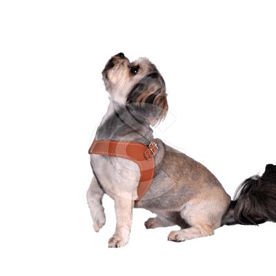 Harnais cuir Confort Rich Dog