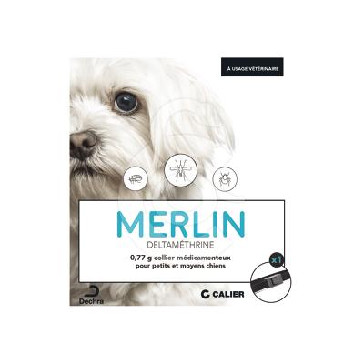 Merlin Collier petit/moy Chien