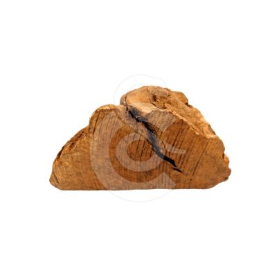 Racine d'arbre à mâcher