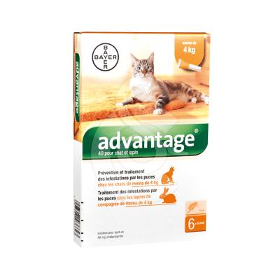 Advantage 40 Chat/Lapin