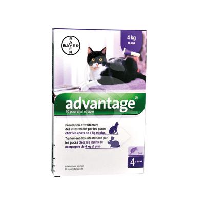 Advantage 80 Chat/Lapin