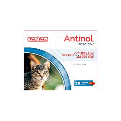 Antinol chat