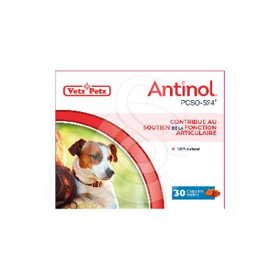 Antinol chien