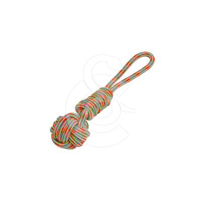 Jouet chien Wouapy : corde de jeu Driss
